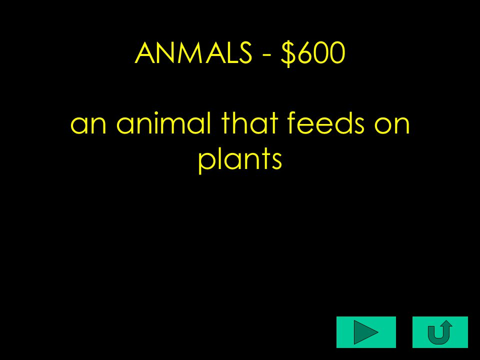 C1-$200 ANMALS - $600 an animal that feeds on plants