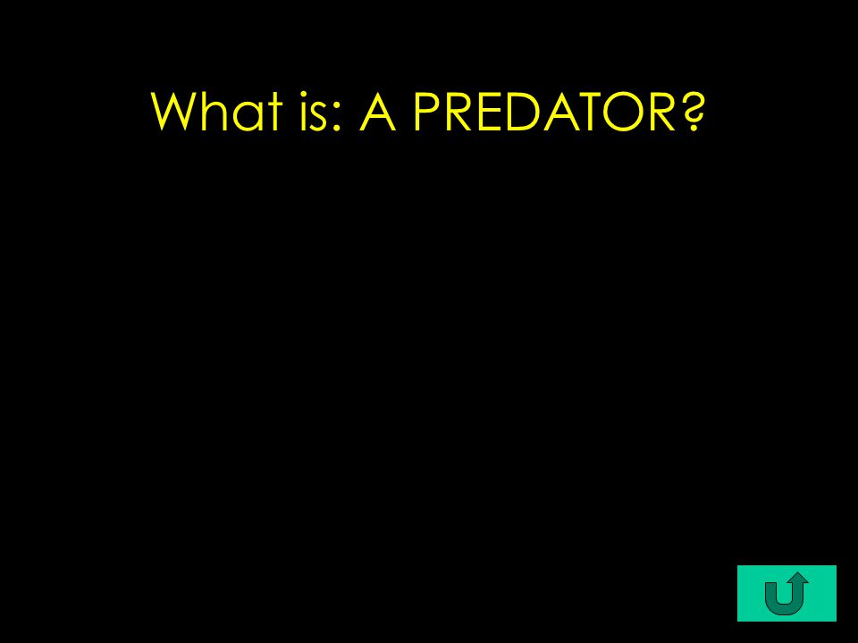 What is: A PREDATOR?