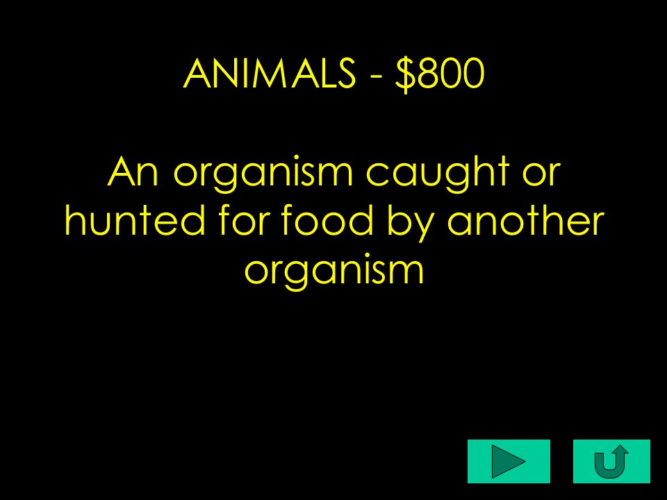 C1-$400 ANIMALS - $800 An organism caught or hunted for food by another organism