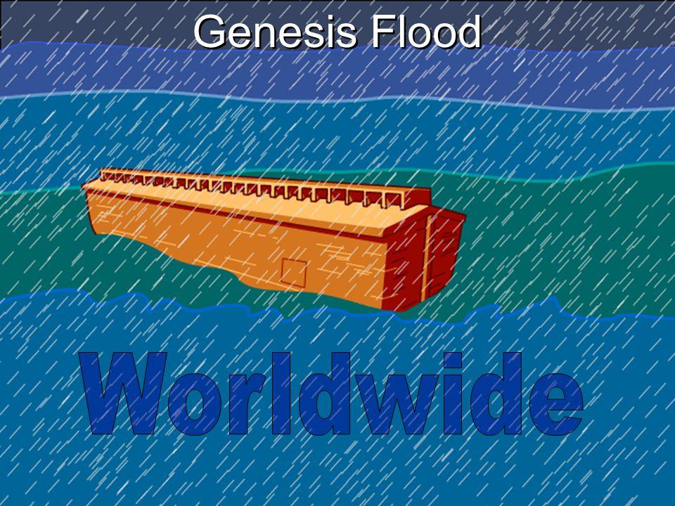 Genesis Flood