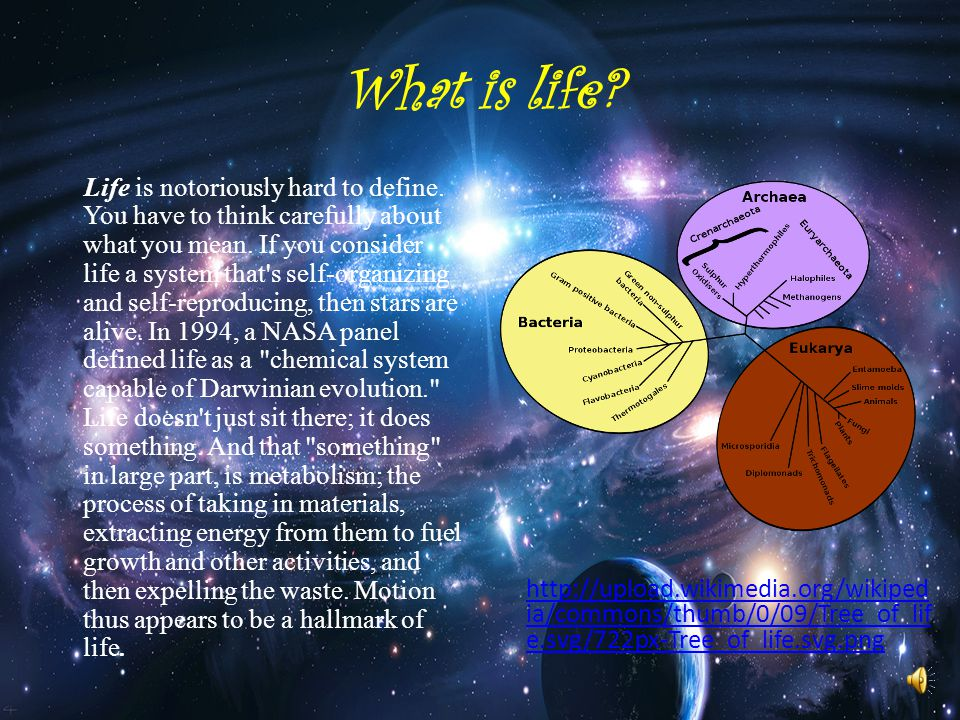 Does life exist elsewhere in the Universe? By Imtiaz Hanif