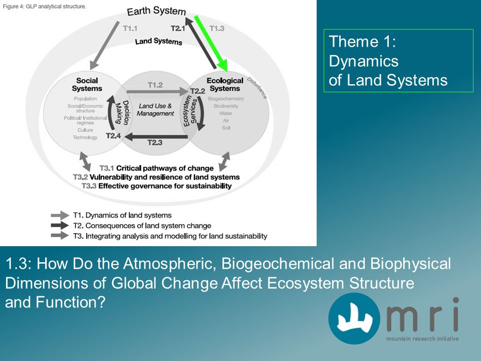 1.3: How Do the Atmospheric, Biogeochemical and Biophysical Dimensions of Global Change Affect Ecosystem Structure and Function? Theme 1: Dynamics of