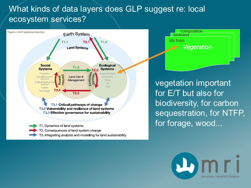 What kinds of data layers does GLP suggest re: local ecosystem services? Vegetation vegetation important for E/T but also for biodiversity, for carbon