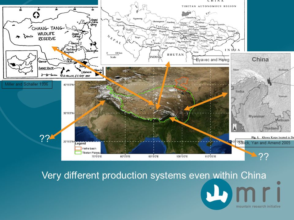 Very different production systems even within China ?? Miller and Schaller 1996 Ryavec and Heregin 1998 Salick, Yan and Amend 2005