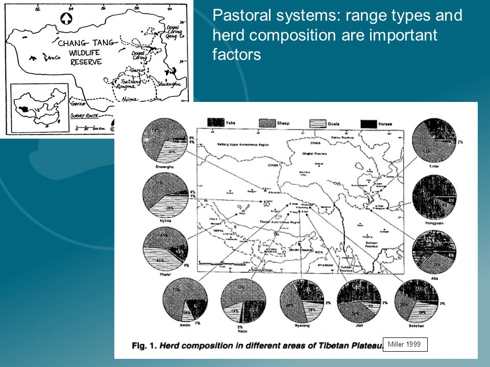 Pastoral systems: range types and herd composition are important factors Miller 1999