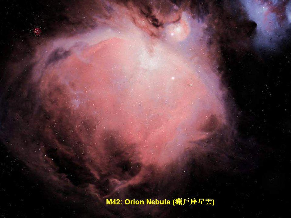 NGC 2237: The Rosette Nebula ( 玫瑰花形星雲 )