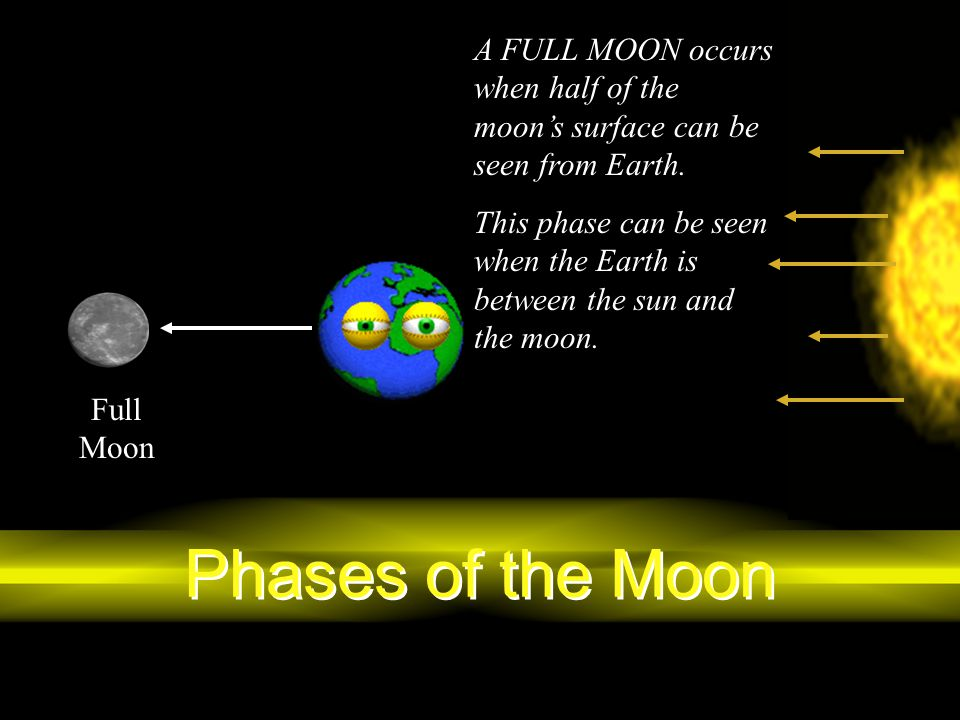 Phases of the Moon A FULL MOON occurs when half of the moon's surface can be seen from Earth. This phase can be seen when the Earth is between the sun