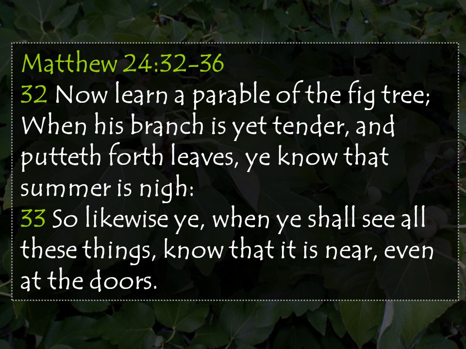 Matthew 24:32-36 32 Now learn a parable of the fig tree; When his branch is yet tender, and putteth forth leaves, ye know that summer is nigh: 33 So l