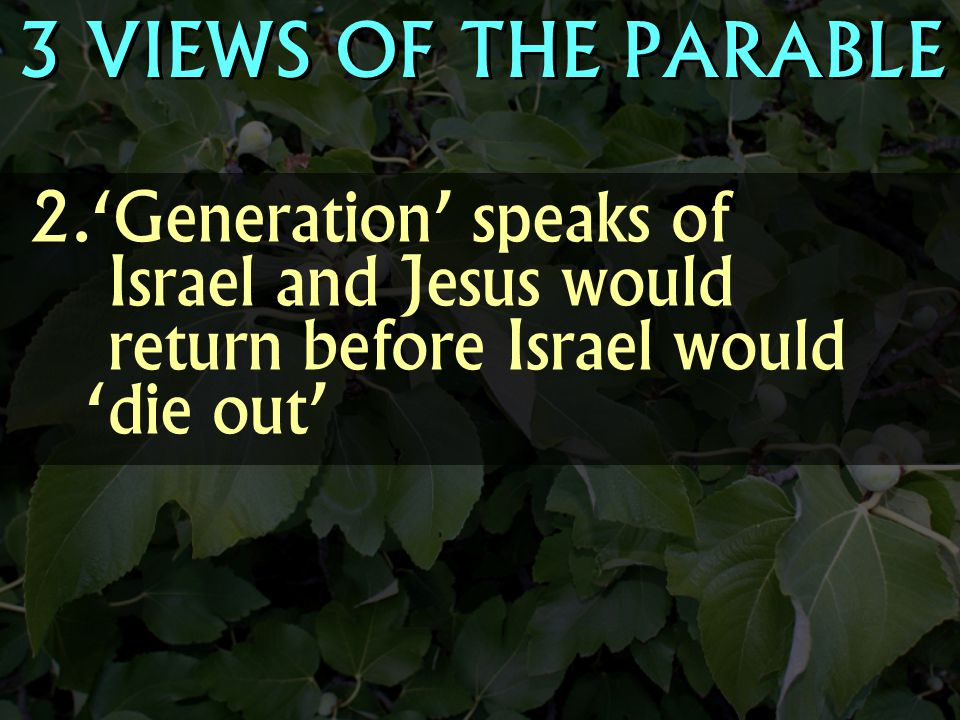  'Generation' speaks of Israel and Jesus would return before Israel would 'die out' 3 VIEWS OF THE PARABLE