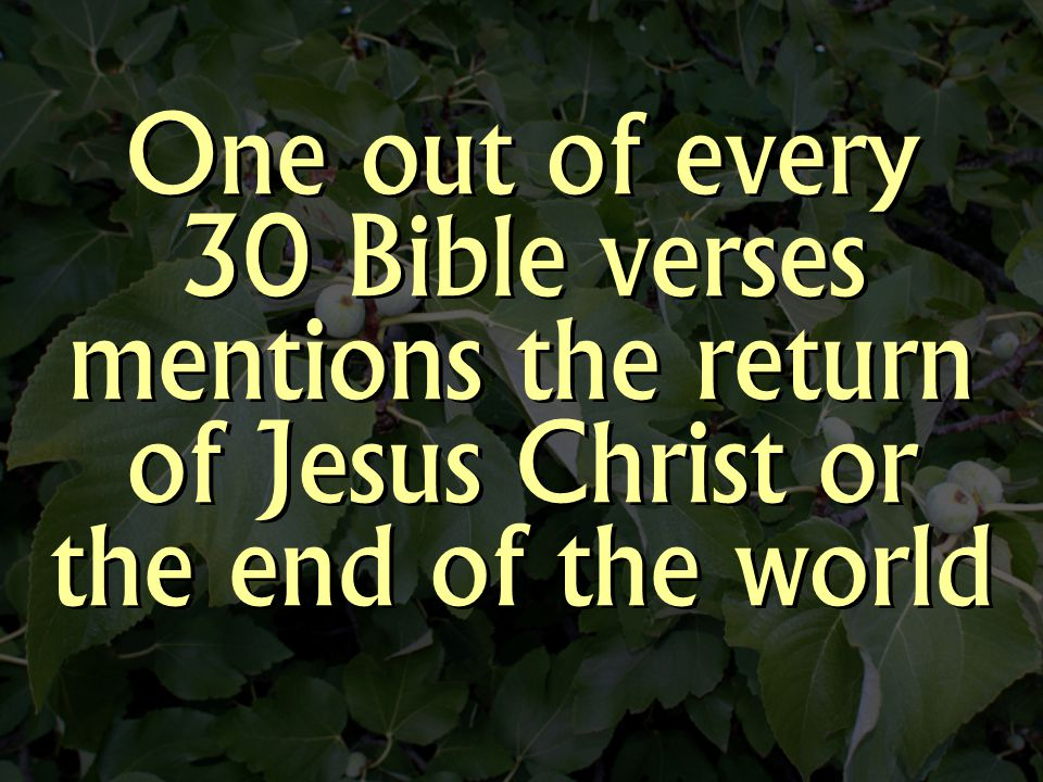 It Is Certainly Guaranteed By Jesus Christ's Very Own Words.