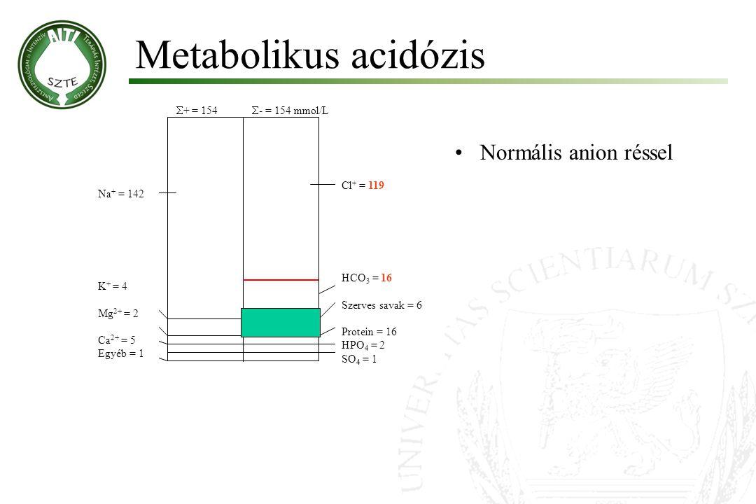 Metabolikus acidózis  + = 154  - = 154 mmol/L HCO 3 = 16 Szerves savak = 6 Protein = 16 HPO 4 = 2 SO 4 = 1 Cl + = 119 Na + = 142 K + = 4 Mg 2+ = 2 C