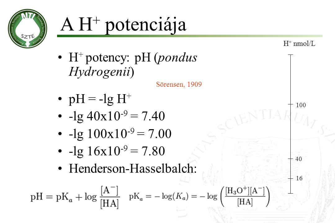 H + potency: pH (pondus Hydrogenii) Sörensen, 1909 pH = -lg H + -lg 40x10 -9 = 7.40 -lg 100x10 -9 = 7.00 -lg 16x10 -9 = 7.80 Henderson-Hasselbalch: Mo