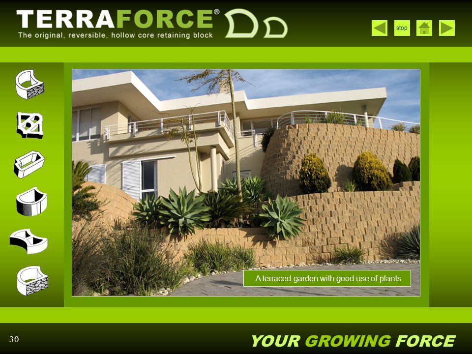 YOUR GROWING FORCE stop 30 A terraced garden with good use of plants