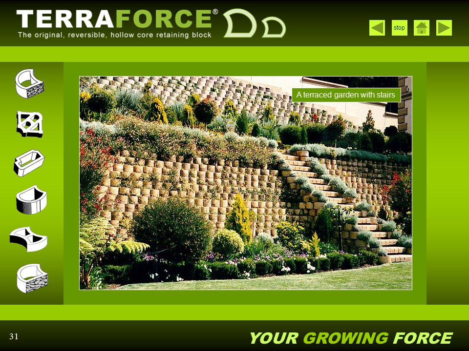 YOUR GROWING FORCE stop 31 A terraced garden with stairs
