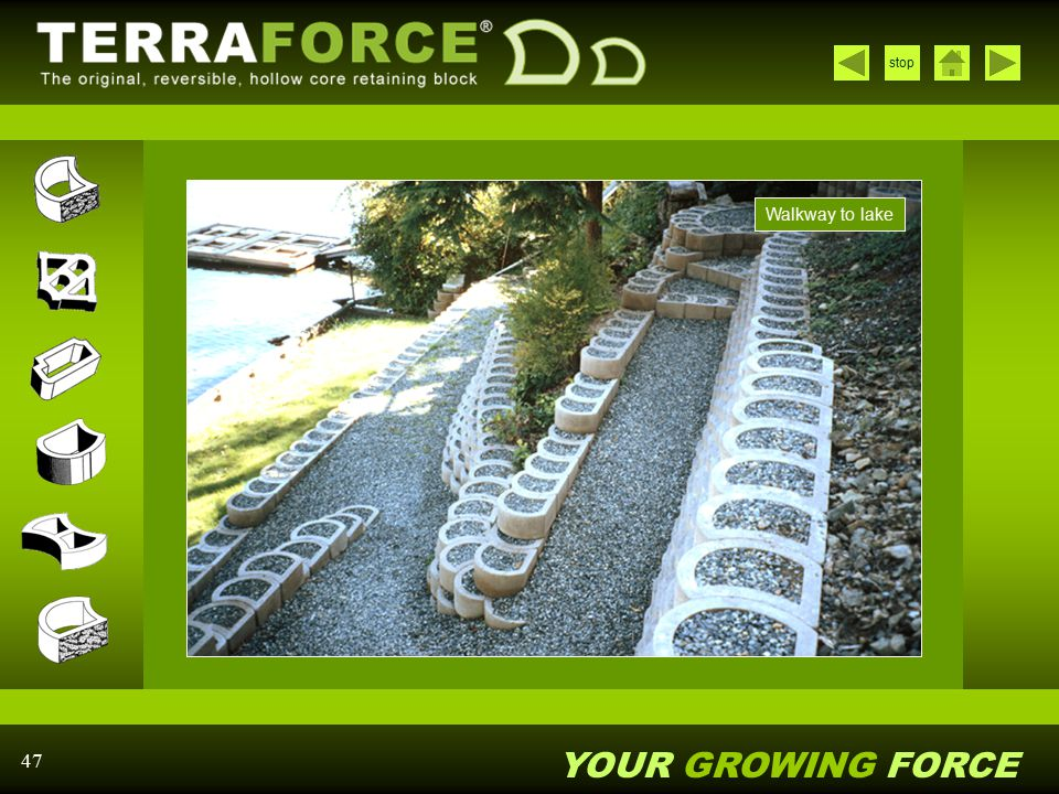 YOUR GROWING FORCE stop 47 Walkway to lake