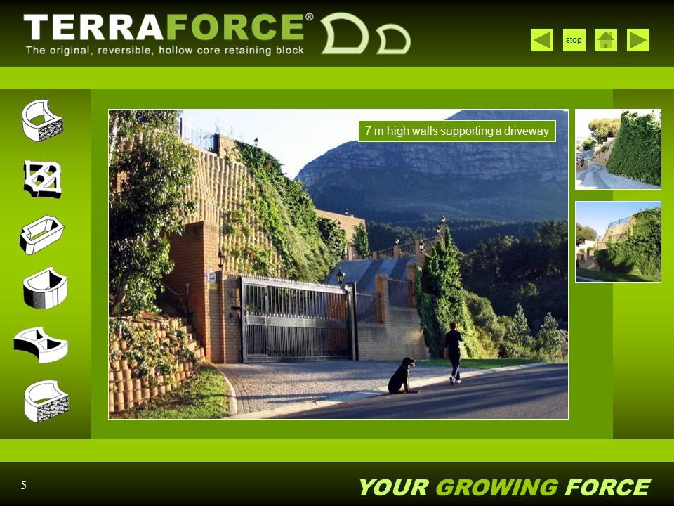 YOUR GROWING FORCE stop 16 The project a few years later