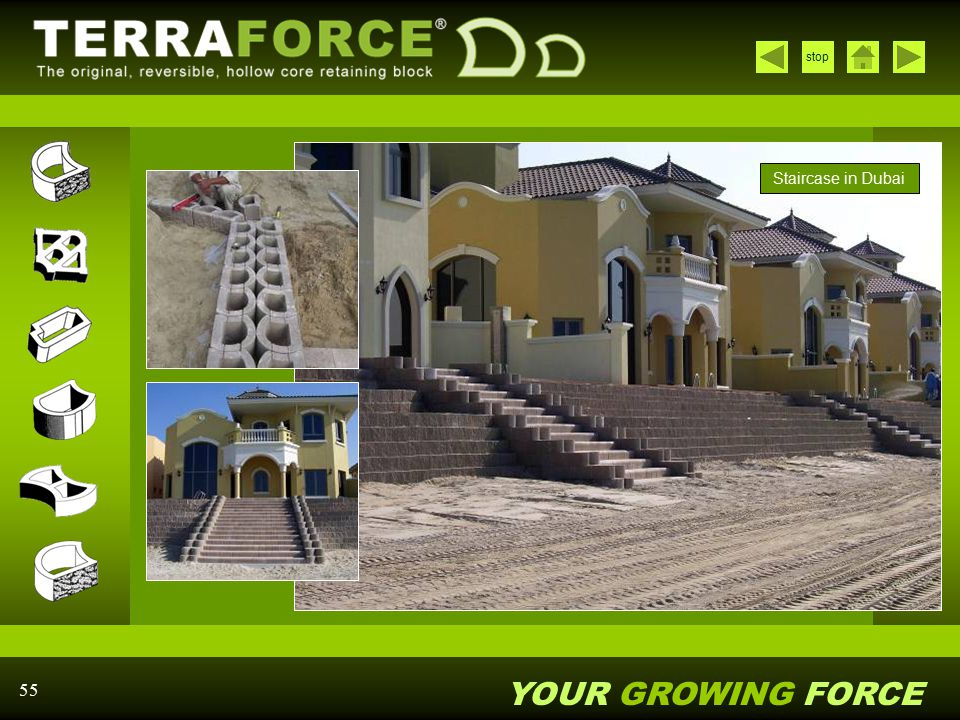 YOUR GROWING FORCE stop 55 Staircase in Dubai