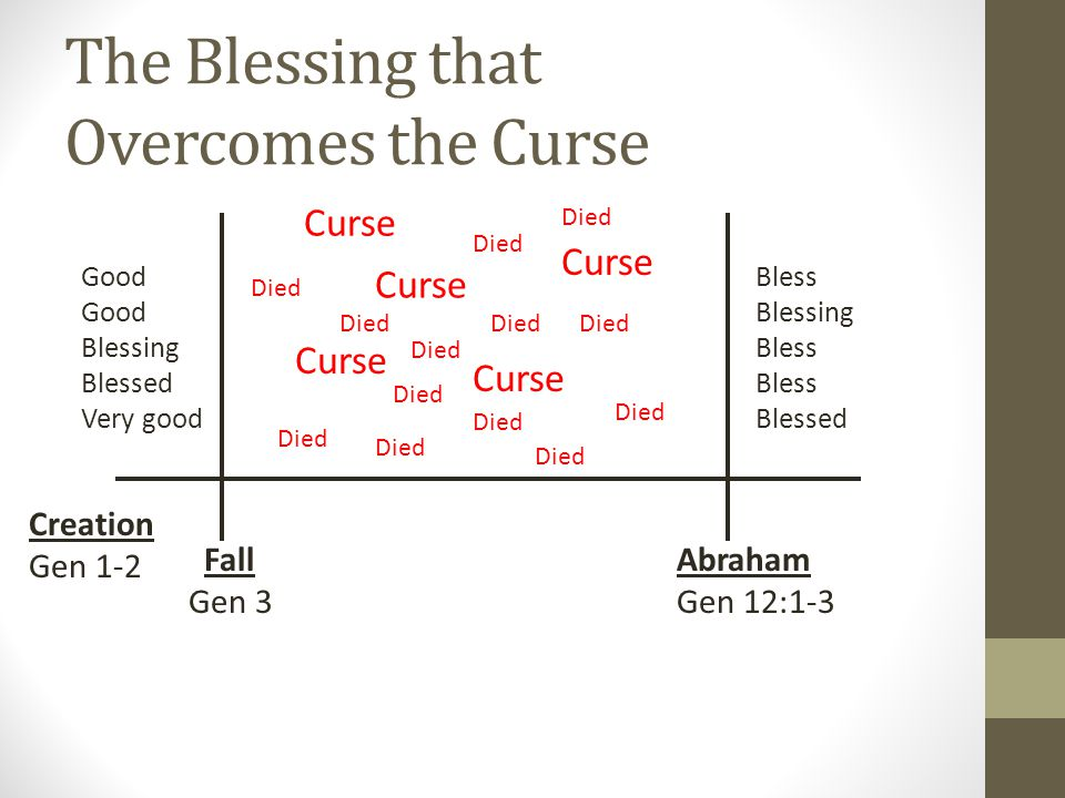 Israel is Another Adam Adam's Big Job: 1.Blessing 2.Multiplying 3.Ruling