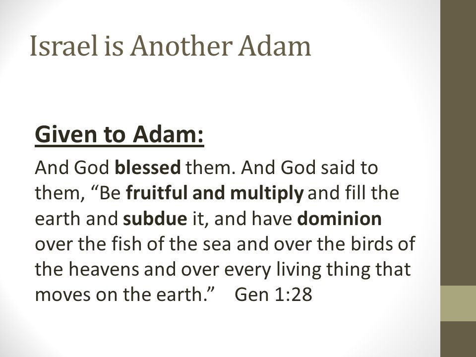 Israel is Another Adam Passed on to Noah (Adam 2.0): And God blessed Noah and his sons and said to them, Be fruitful and multiply and fill the earth.
