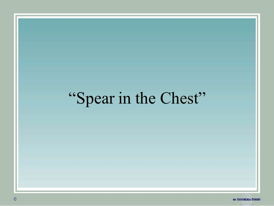 © © Spear in the Chest