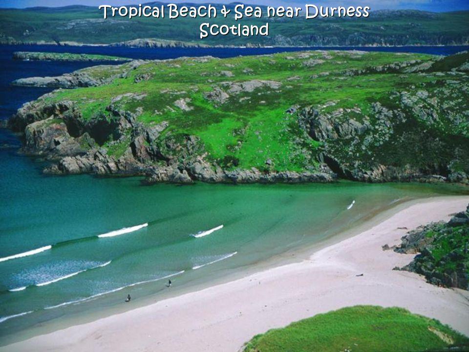 Tropical Beach & Sea near Durness Scotland