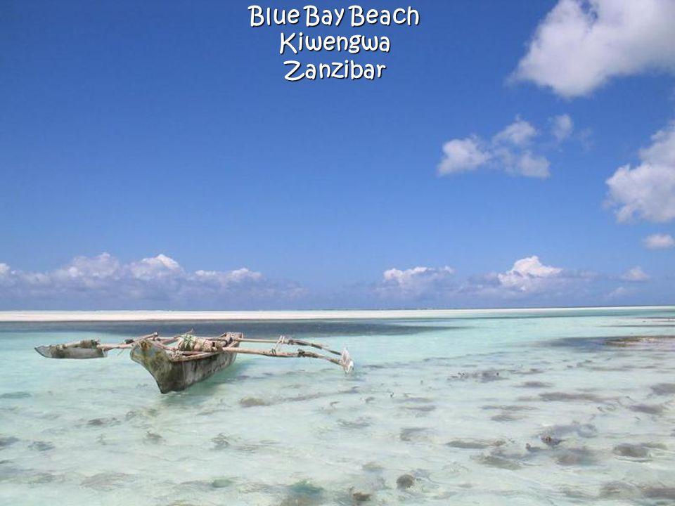 Blue Bay Beach KiwengwaZanzibar