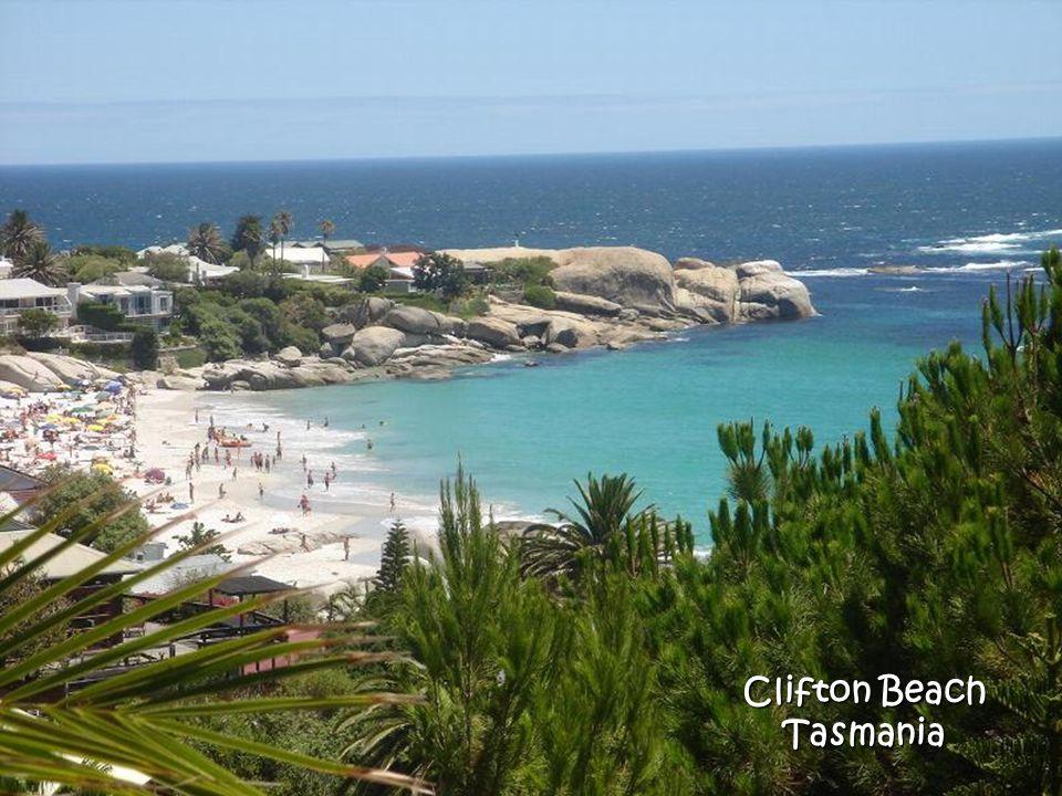 Clifton Beach Tasmania