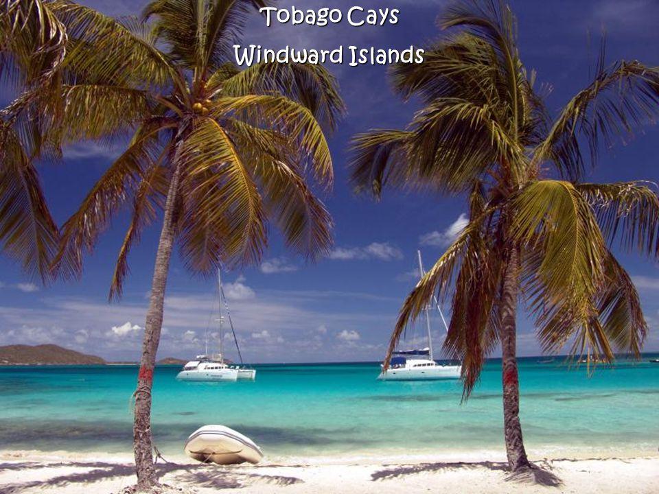 Tobago Cays Windward Islands