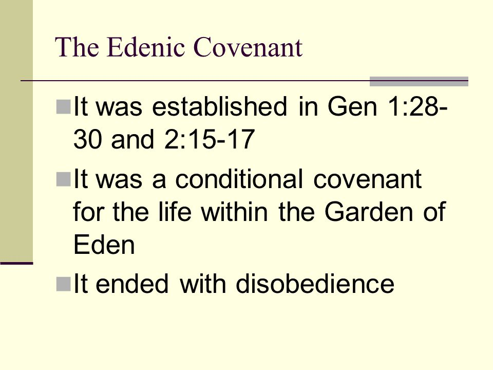 The Adamic Covenant It is an unconditional covenant.