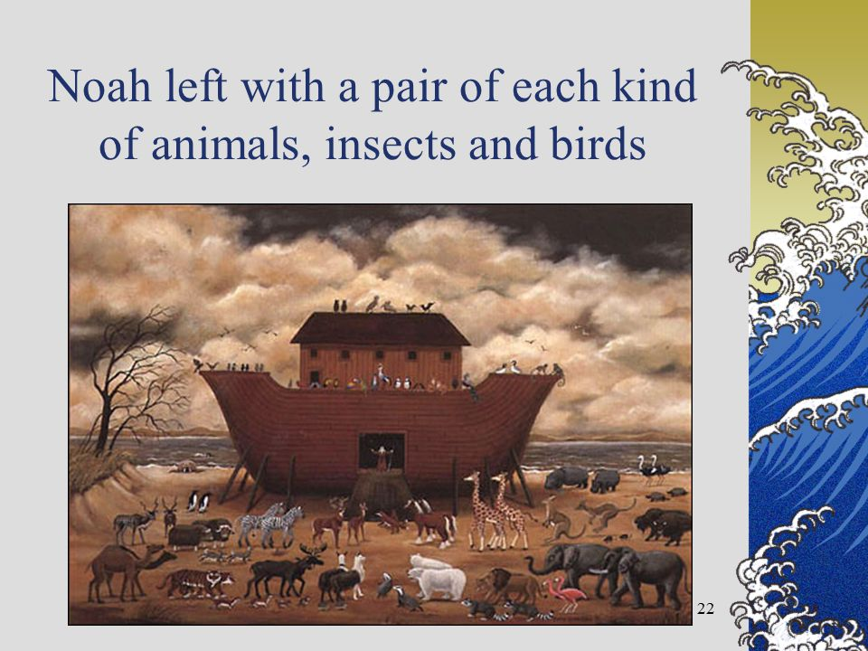 Noah left with a pair of each kind of animals, insects and birds 22