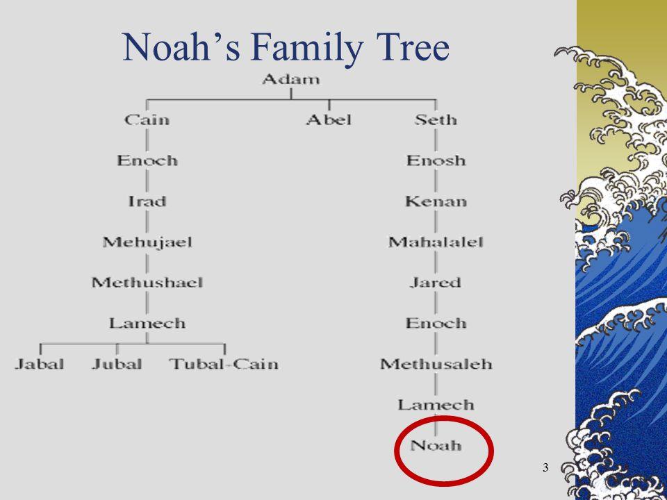 Noah's Family Tree 3