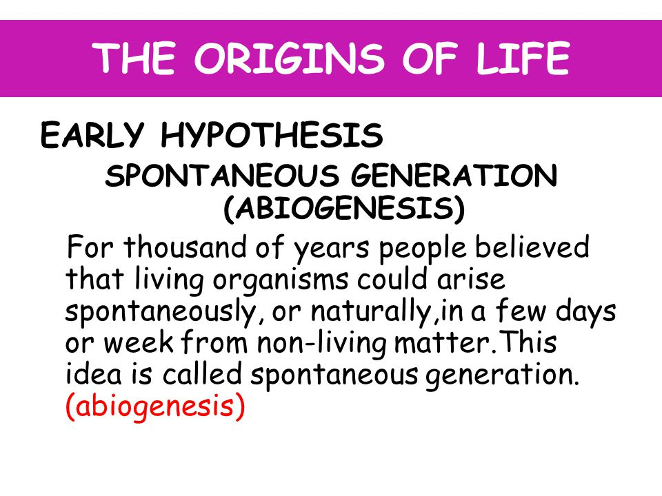THE ORIGINS OF LIFE EARLY HYPOTHESIS SPONTANEOUS GENERATION (ABIOGENESIS) For thousand of years people believed that living organisms could arise spontaneously, or naturally,in a few days or week from non-living matter.This idea is called spontaneous generation.
