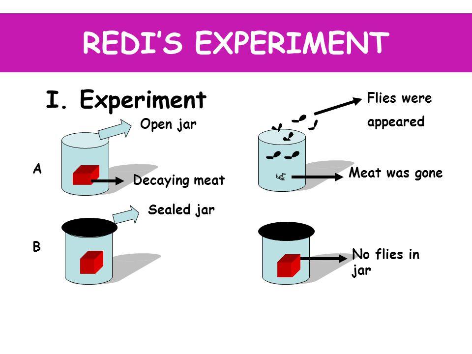 REDI'S EXPERIMENT I.