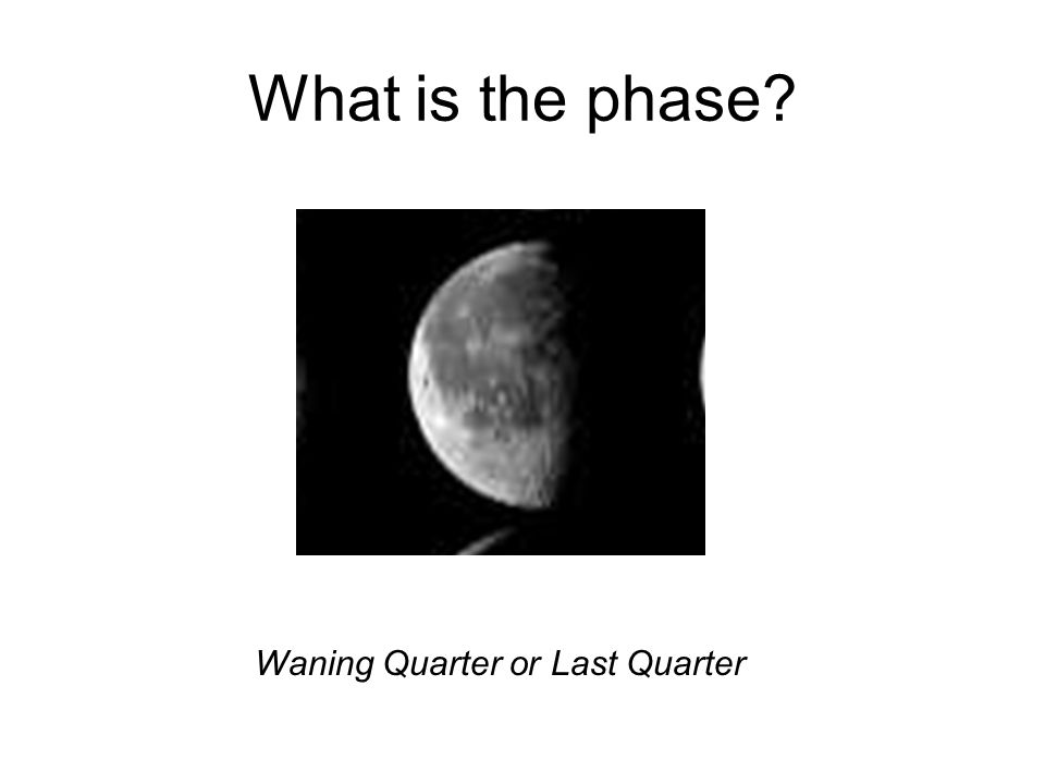 What is the phase? Waning Quarter or Last Quarter