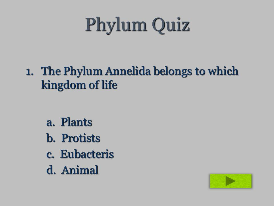 Phylum Quiz 1.The Phylum Annelida belongs to which kingdom of life a. Plants b. Protists c. Eubacteris d. Animal
