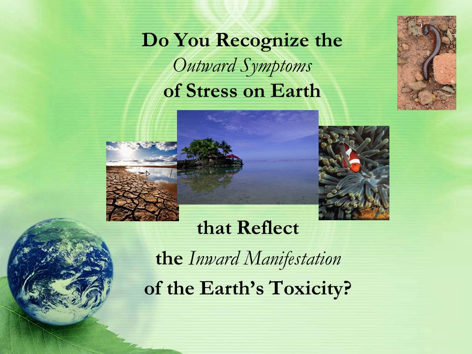 Can You Say for Sure, Whether or Not the Earth's Eco-System Is Equipped to Deal Effectively with Stress, In Order to Support Life