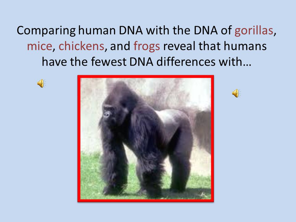 …survive and reproduce at a greater rate than other organisms Organisms with traits well-suited to the environment will…