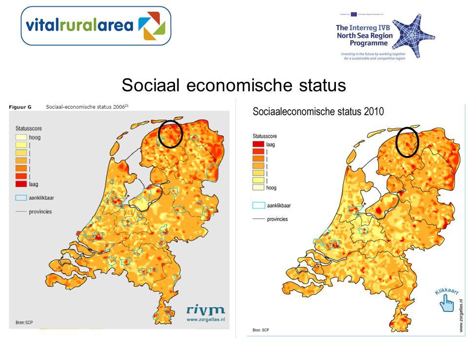 Sociaal economische status