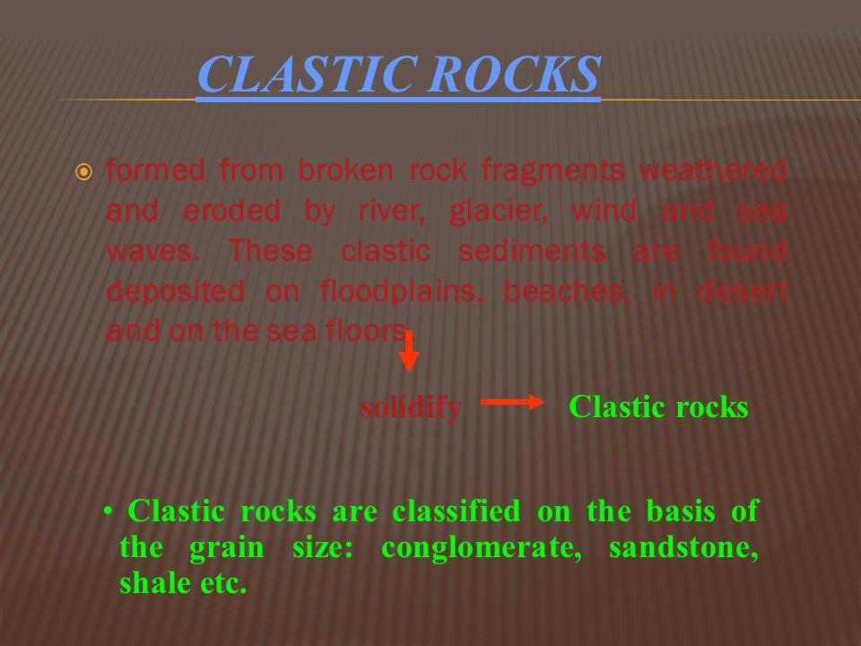  Sandstones  Conglomerates  Breccia  Shale/mudstone s TYPES OF SEDIMENTARY ROCKS Clastic rocksChemical & Organic rocks Evaporitic rocks These rock