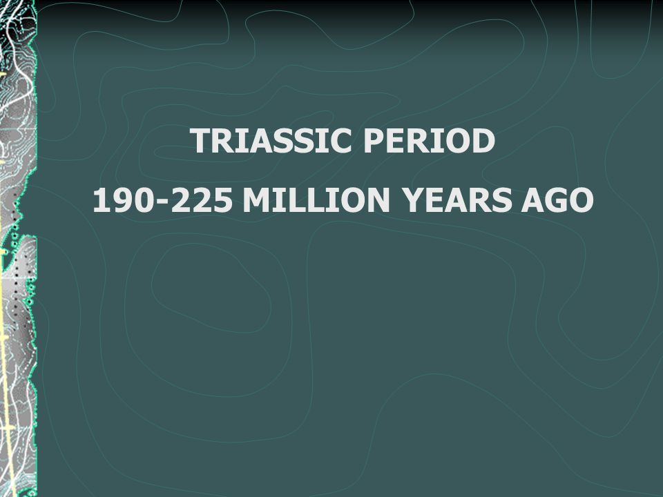 TRIASSIC PERIOD 190-225 MILLION YEARS AGO