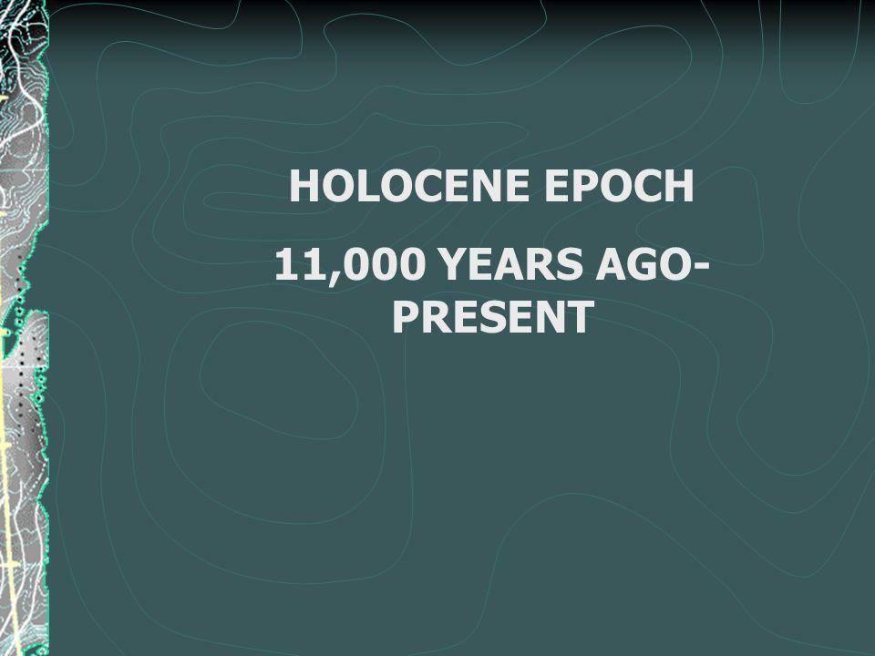 HOLOCENE EPOCH 11,000 YEARS AGO- PRESENT