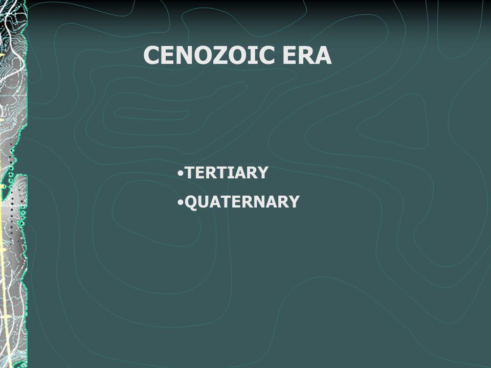 CENOZOIC ERA TERTIARY QUATERNARY