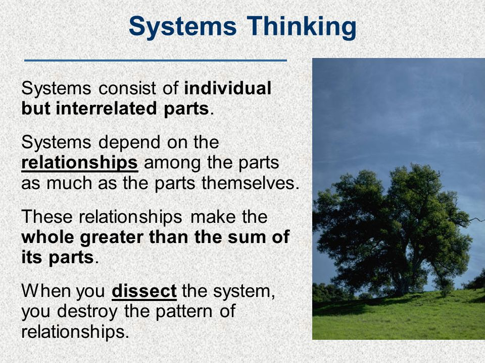 Systems Thinking Systems consist of individual but interrelated parts.