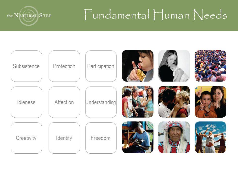 Fundamental Human Needs SubsistenceProtectionParticipation IdlenessAffection Understanding CreativityIdentityFreedom