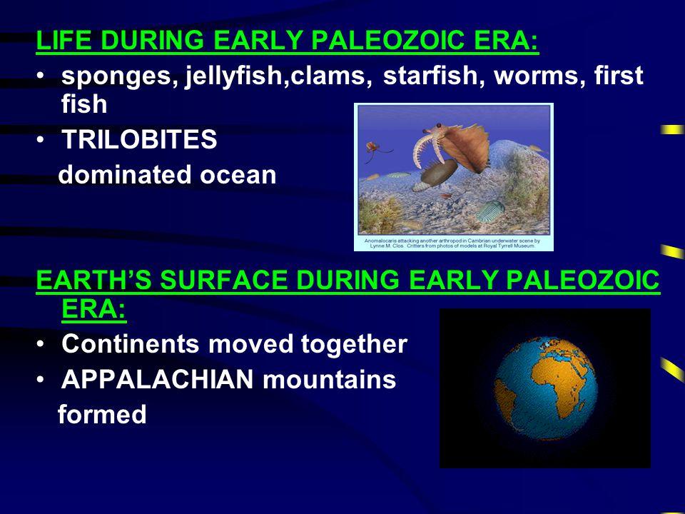"""PALEOZOIC ERA 2nd Era """"Ancient Life"""" Age of Invertebrates (no backbones) Lasted 345 Million Years"""