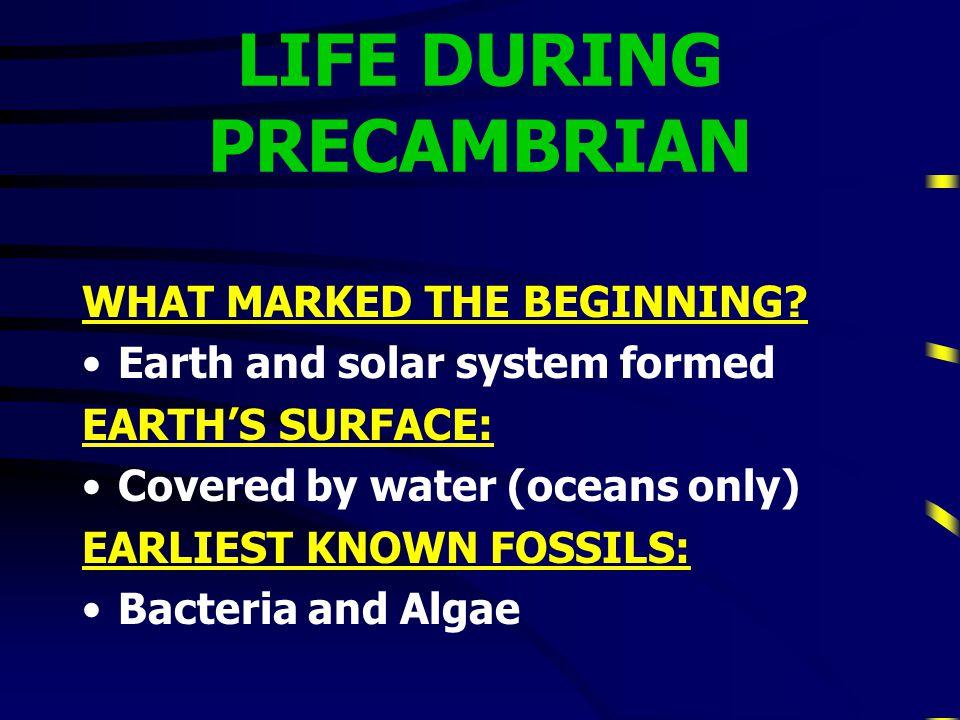 PRECAMBRIAN 1st Era1st Era Longest era (4 billion years long)Longest era (4 billion years long)