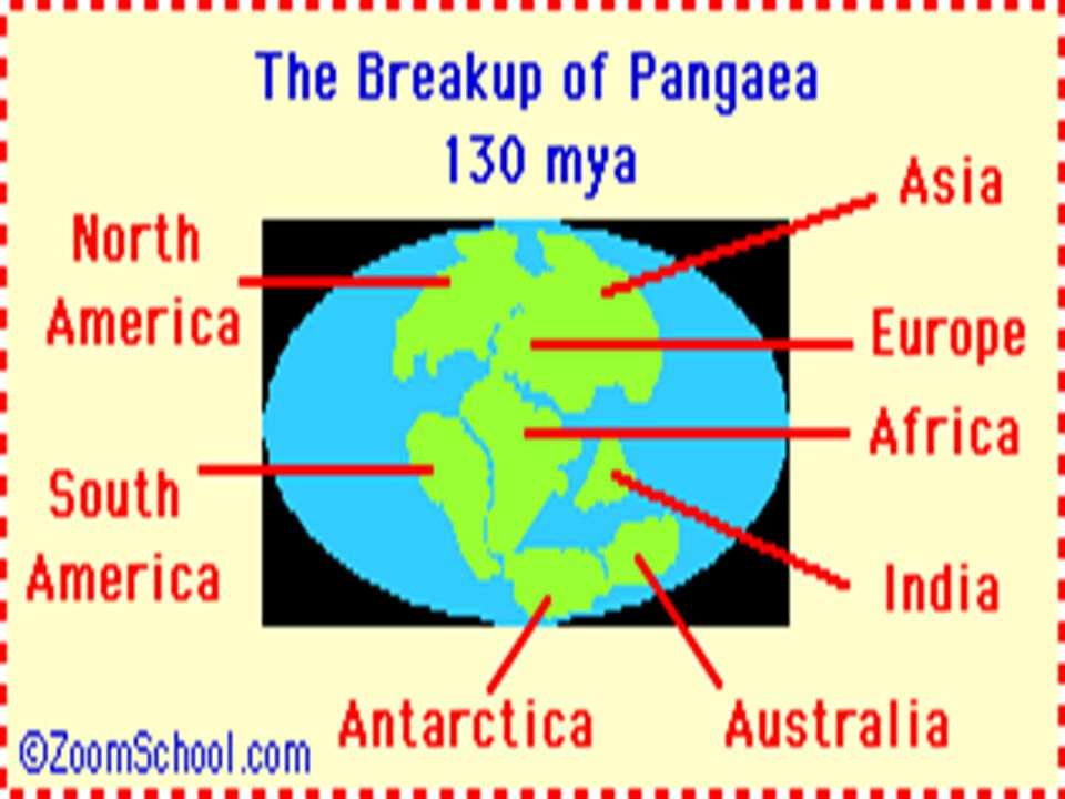 MESOZOIC CONTINUED EARTH DURING MESOZOIC CONTINENTS Break-up of PANGEA ROCKY mountains formed (U.S.) CLIMATE: Wet and warm WHAT MARKED THIS ERA'S END.