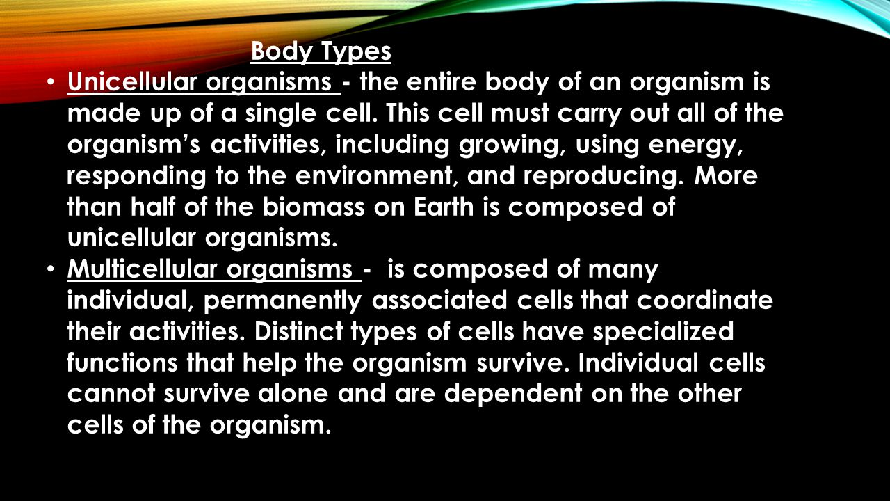 Colonial organisms – Some unicellular organisms can thrive independently, but others live in groups.