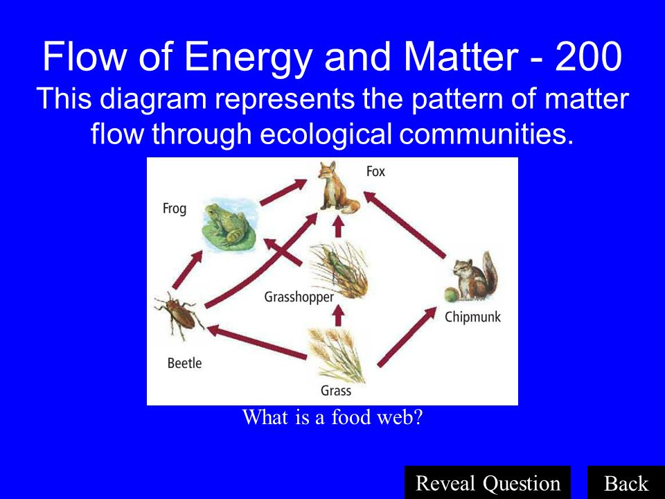 Organisms and Their Relationships 200 Both where an organism lives and the role it plays within its environment. What is an ecological niche? Back Rev