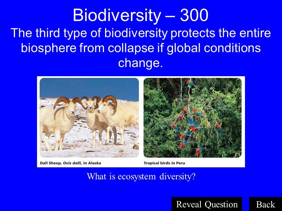 Population Dynamics – 300 Factors that limit the sizes of populations that are not tied to population density. Examples: hurricanes, volcanic eruption